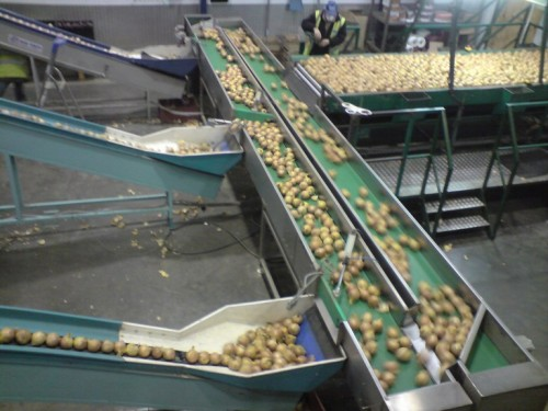 Flow and return conveyor system